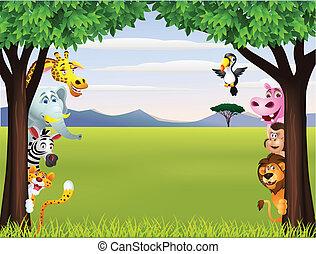 מצחיק, סאפארי, בעל חיים, ציור היתולי