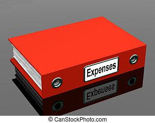 נהול חשבונות, תקליטים, מראה, תייק, הוצאות
