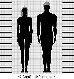 נקבה, זכר, דפוסיות, גוף