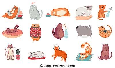 סוודר, נחמד, חיה בית, עיתון מצויר, מוסיקה, מצחיק, דוגמה, מחשב נייד, cats., להקשיב, שומן, קופסה, חתול, חתלתול, לישון, ביתי, יוגה, מדבקות, חמוד, set., וקטור, בעל חיים, lifestyle., לעבוד
