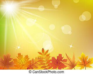 סתו עוזב, אור השמש, רקע