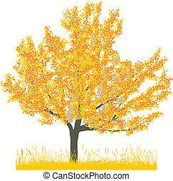 סתו, עץ של דובדבן