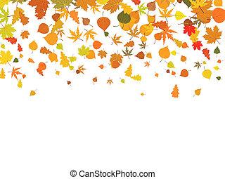 סתו, leaves., רקע