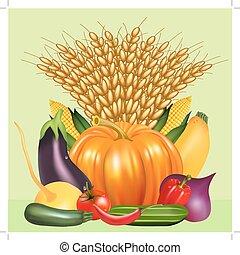 עגבניה, ירקות, מלפפון, אוזן, אסף, דלעת