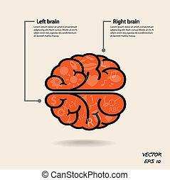 עזוב, יצירתיות, עסק, ידע, מוח, איקון, זכות, חתום, סמל, חינוך