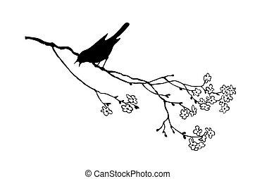 ענף, עץ, צפור, וקטור, צללית