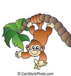 עץ, דקל, קוף, לתלות