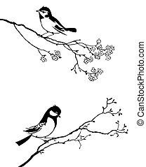 עץ, וקטור, צללית, צפור, ענף