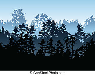 עץ ירוק-עד, יער