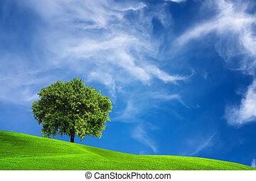 עץ של אלון, טבע