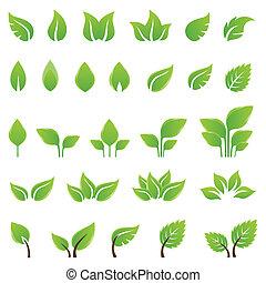 עצב, עוזב, קבע, ירוק, יסודות