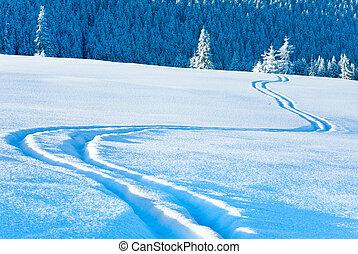 עקב, גלוש, behind., פ.י.ר., השלג, התגלה, יער