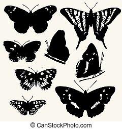 פרפר, קבע, איקונים, silhouettes., אפור, הפרד, רקע., פרפרים, וקטור