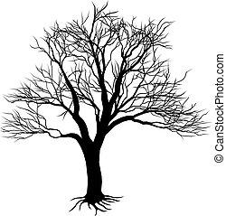 צללית, עץ ערום