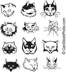 קבע, ראשים, תאר, חתול