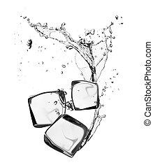 קוביות, הפרד, מים של קרח, התז, רקע, לבן