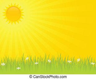 קיץ, יום בהיר