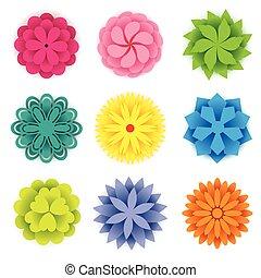 קפוץ פרחים, נייר, צבעוני, תבל