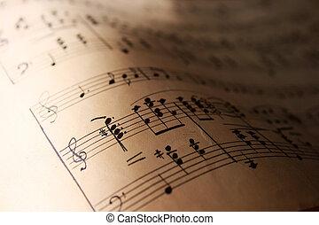 רואה, מוסיקה, עמת, ה.י.ג.
