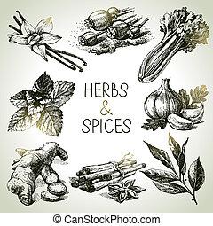 רשום, איקונים, העבר, דשא, צייר, spices., מטבח