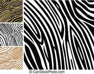 תבנית של רקע, -, zebra, עור של בעל החיים מדפיס