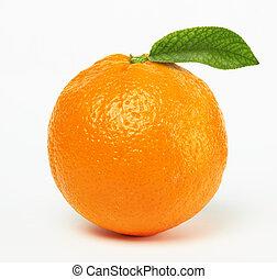 תפוז, דפדף