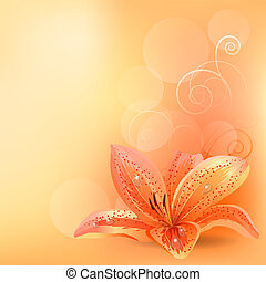 תפוז, פסטל, שושן, רקע, אור