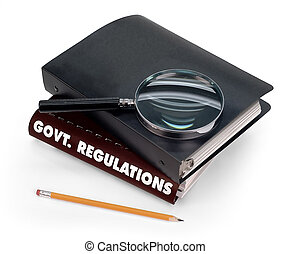 תקנון, ממשלה