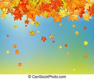 (autumn), רקע, נפול