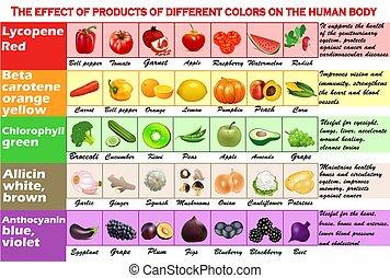 body., -, שונה, בן אנוש, set., מוצרים, בצע, צבעים, דוגמה, infographics