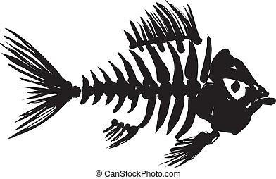 fish, שלד