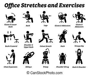 muscle., הרגע, קטעים, תרגילים, לעבוד, מתח, משרד