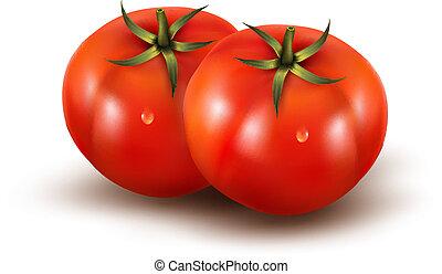 photo-realistic, illustration., הפרד, רקע., וקטור, לבן, עגבניות
