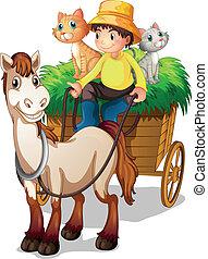 strawcart, שלו, בעלי חיים, חוה, חקלאי, רכוב