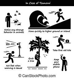 tsunami, מקרה