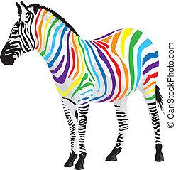 zebra., שונה, התפשט, colors.